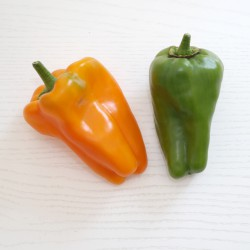 """Peperone dolce """"Nocera"""" rosso e giallo mix (10 semi) - peperoni"""