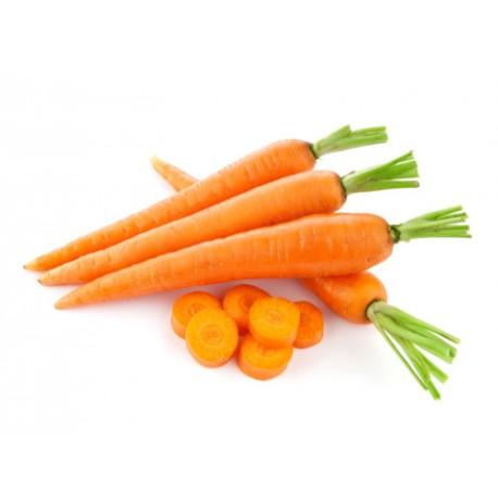 Carota Classica (50 semi) - carote arancioni