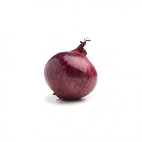 Cipolla rossa tonda (30 semi)